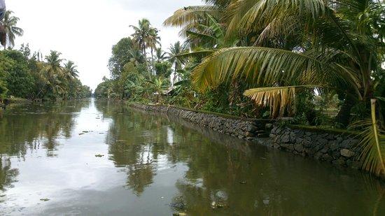 Kerala Backwaters: narrow kerala back water