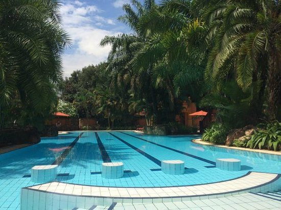 Kampala Serena Hotel: Gorgeous (and empty!) pool