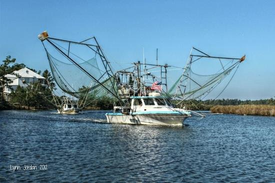 Fresh Market Seafood: We have 5 boats, providing fresh seafood daily!