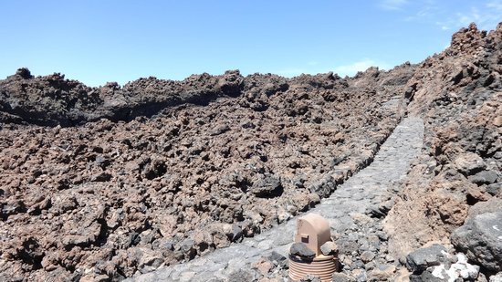 Volcan El Teide : To walk on the lava of the volcano