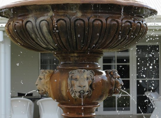 Leogate Estate Wines: the fountain lions