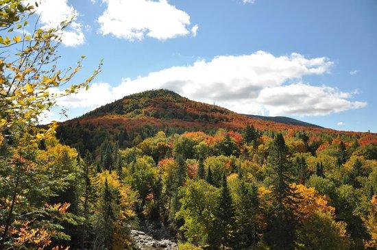 Massif du Sud Regional Park