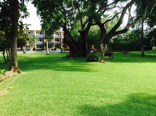 Hotel Calli: Grounds