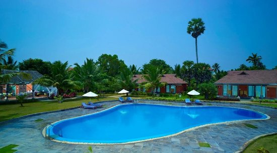 Puvar, India: Ayurveda Spa Swimming Pool