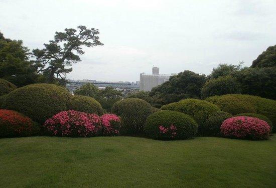Tojo House : 庭園