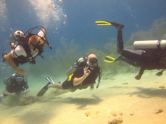 Couples Sans Souci: Adam is diving