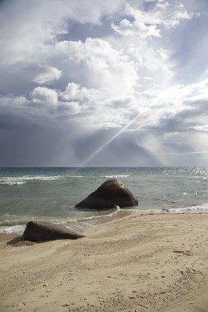 PD Resort : the beach