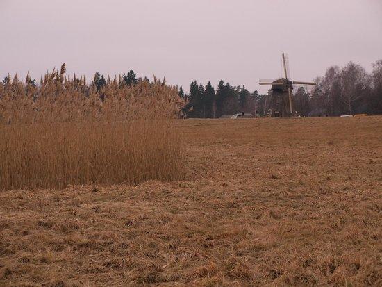 Rumsiskes Open-Air Museum: wind mill