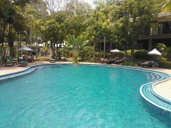 Green Park Resort : бассейн+сад