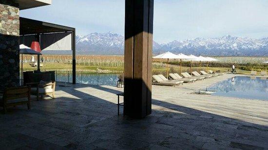 The Vines Resort & Spa: Hotel - area comum