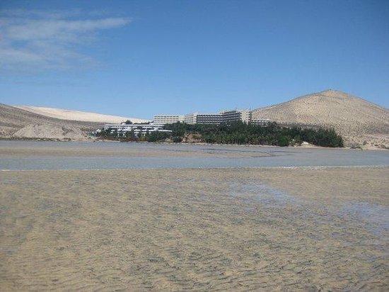 Melia Gorriones Fuerteventura: playa frente al hotel