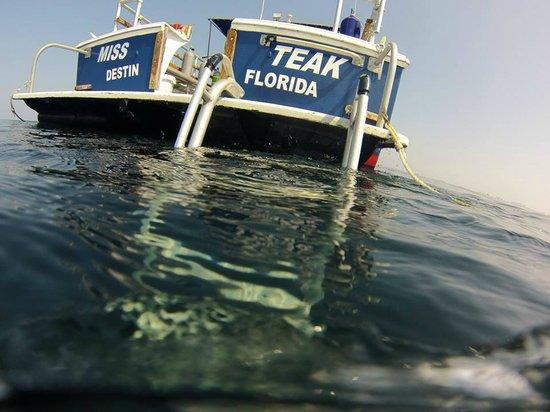 Divers Emporium: Our Dive Boat, the M/V Miss Teak, docked at FWB Yacht Basin!