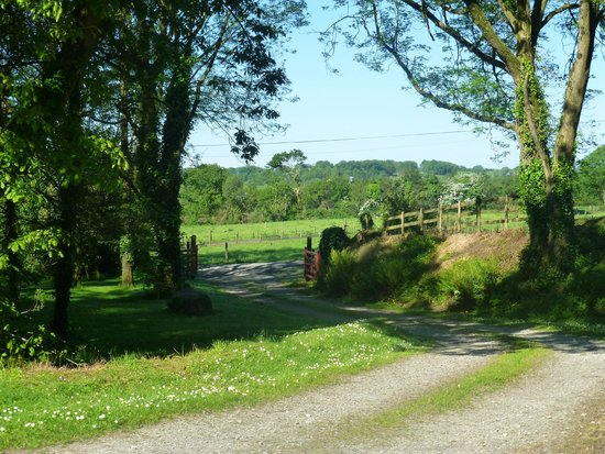 Doire Farm Cottages : our view and the entrance