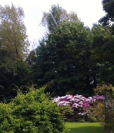 The Keadeen Hotel: Colourful garden