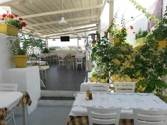 Elia: Roof garden