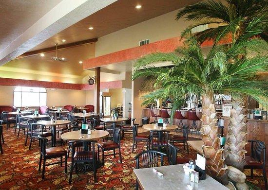 Oasis casino soaring eagle casino and mt pleasant