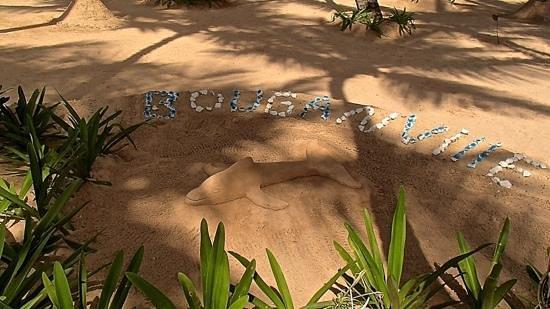 Luxury Bahia Principe Bouganville Don Pablo Collection: песчаные фигуры в отеле