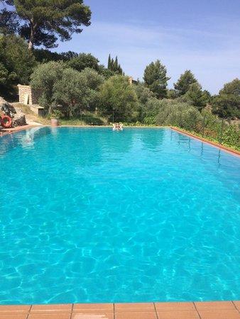 Agroturismo S'Olivar: Beautiful fresh pool