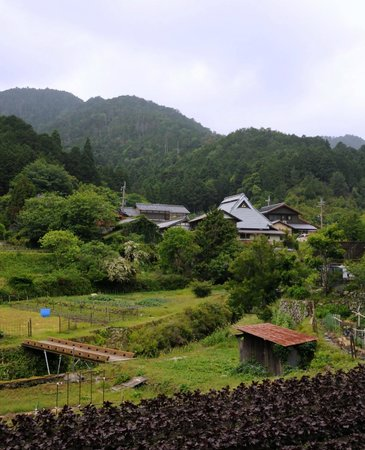 Ohara Sanso: Rural Ohara valley, in which the hotel is located