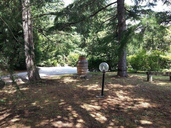 I Nidi di Cortona: Giardino