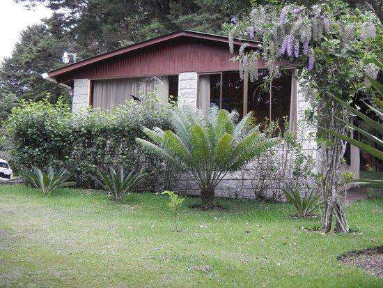 Los Pinos - Cabanas y Jardines : Beautiful surroundings