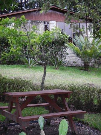 Los Pinos - Cabanas y Jardines : Picnic area outside cabin
