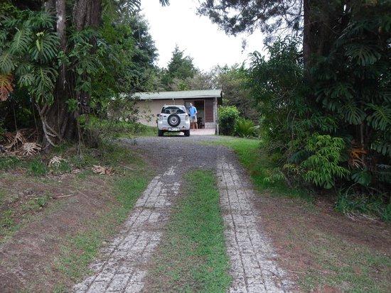 Los Pinos - Cabanas y Jardines : Driveway to the cabin