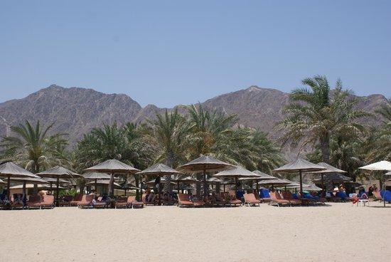 Miramar Al Aqah Beach Resort: Горы
