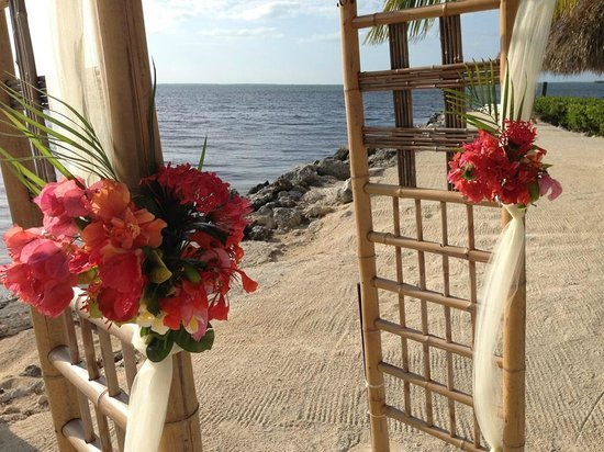 Atlantic Bay Resort: Beautiful flowers by Ashley!