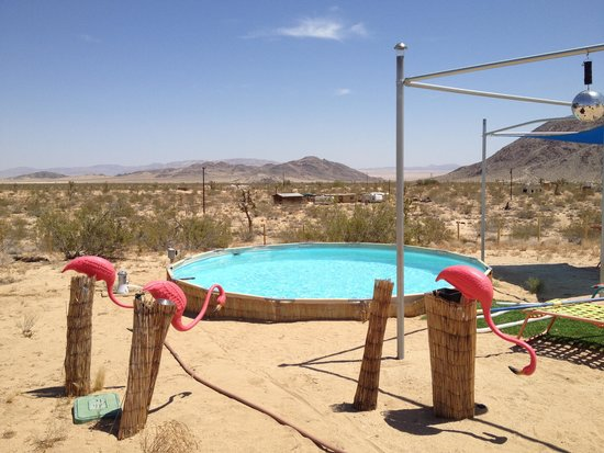 Kate's Lazy Desert: The Oasis