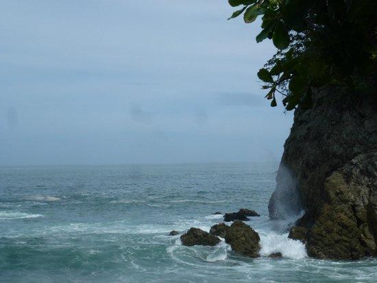 Segway Tours of Costa Rica : Nahomi Park