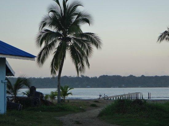 Hostal Mar e Iguana: Playa frete al hostel