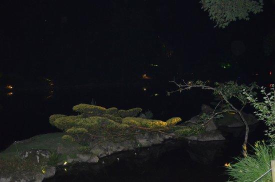 Parc Oriental de Maulevrier (3)