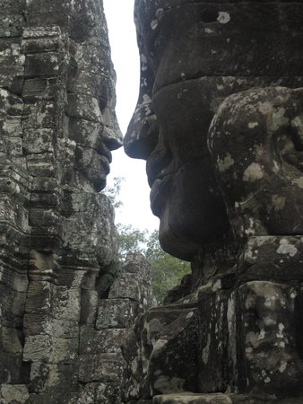 Siem Reap Private Day Tours: nose to nose.