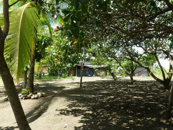 Segway Tours of Costa Rica: Cocal Village
