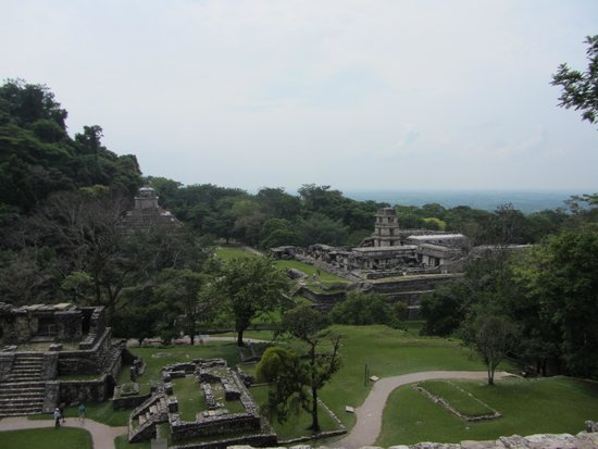 Palenque ruinas: View of the Grand Palace taken from the Temple of the Cross