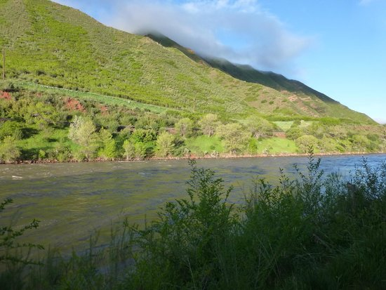 Quality Inn & Suites On The River: Colorado River