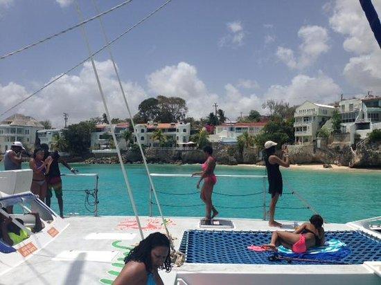 Jammin Catamaran Cruises: Another boat shot
