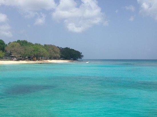 Jammin Catamaran Cruises: The beautiful water!