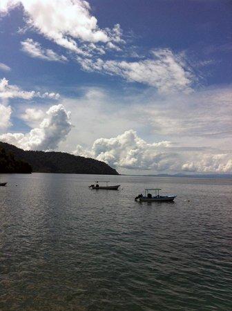 Playa Nicuesa Rainforest Lodge: The cove where one arrives