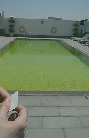 Hues Boutique Hotel: The pool on the roof!
