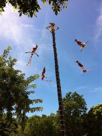 Xcaret Eco Theme Park: Excelentes presentaciones!