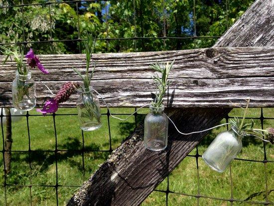Pelindaba Lavender Farm: Lovely way to display lavender