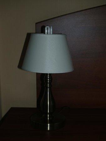 Posadsky Hotel: Лампище...
