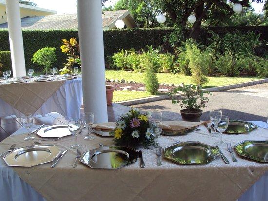 Hotel Casa Del Sol : Jardines