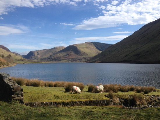 The Old Rectory on the Lake: Talyllyn - Marion and friend?