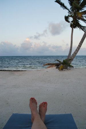 Blackbird Caye Resort : In front of thatched roof cabana
