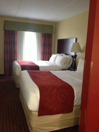 Comfort Suites Mount Juliet: Bedroom