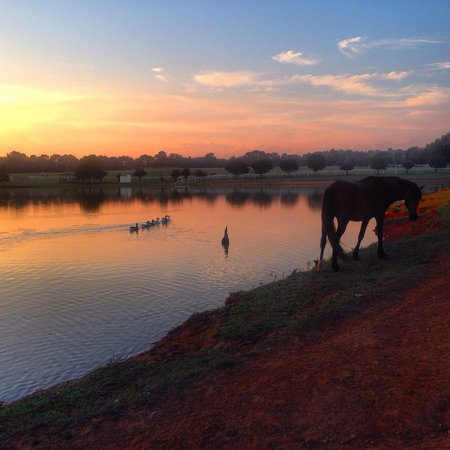 Southern Cross Ranch: Around the lake