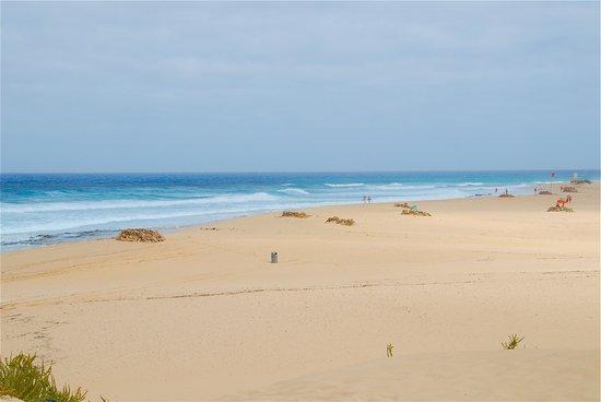 Dunas de Corralejo: La vista da una duna.